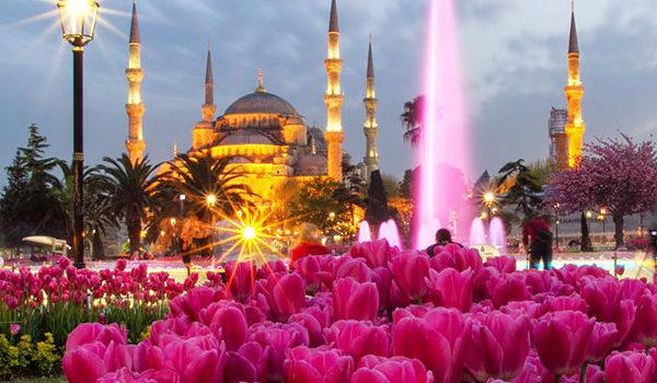 جشنواره گل استانبول