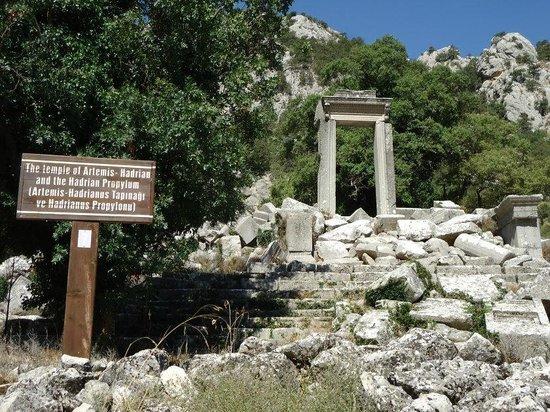 گذری به دنیای قدیم در شهر قدیمی ترمسوس Termessos آنتالیا