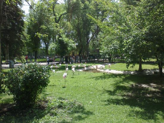 پارک جنگلی آتاتورک، مکانی عالی برای گذراندن روزی همراه با طبیعت در تور آنکارا