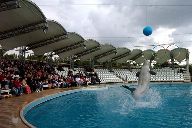 مکان زیبای گردشگری دلفین لند در شهر آنتالیا، کشور ترکیه