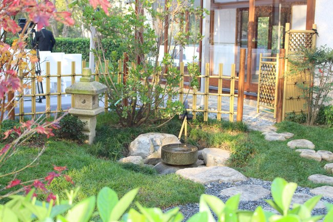 بازدید از زیبایی بی نظیر در باغ ژاپنی بالتالیمانی استانبول