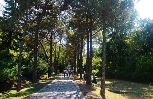 لمس طبیعت زیبای ترکیه در پارک جنگلی آتاتورک استانبول
