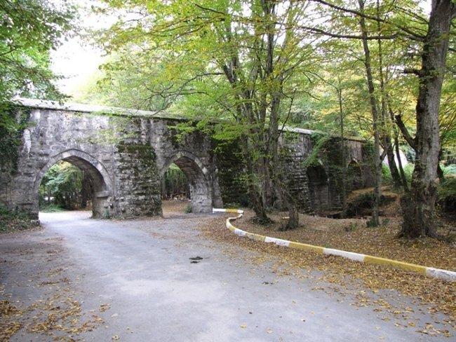 پارک جنگلی آیوات استانبول (Ayvad Bendi Milli Parkı) جنگلی زیبا در شمال استانبول