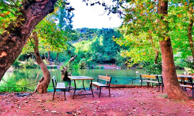 لمس طبیعت زیبای ترکیه در کنار لذت از ورزش در پارک جنگلی بالی کایالار استانبول Bayikalayar