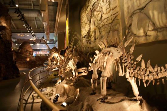 مهمانی با دایناسورهای غول پیکر در پارک ژوراسیک استانبول (Jurassic Land)