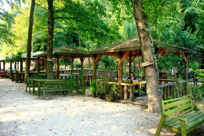 پارک جنگلی چشمههای فاتیح استانبول Tabiat parki fatih Çeşmesi بهشتی در استانبول